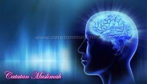 12 Cara Ampuh Membuat Otak Lebih Cerdas