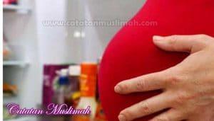 Makanan Berbahaya Bagi Ibu Hamil Yang Harus Dihindari